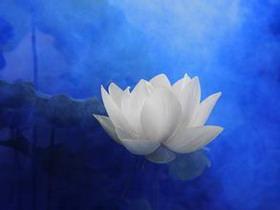 第三世多杰羌佛办公室 第十三号说明 (12/28/2013)