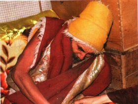 夏珠秋杨法王认证祝贺第三世多杰羌佛
